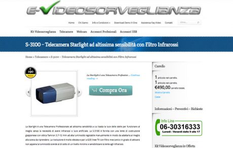 e-Videosorveglianza.it