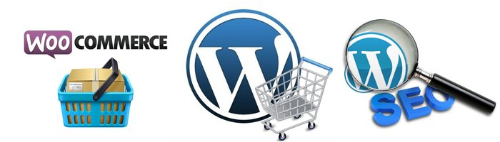 Corsi WordPress Roma - Ecommerce SEO Blog Siti Vetrina